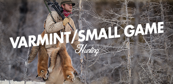 Varmint and Small Game Scopes